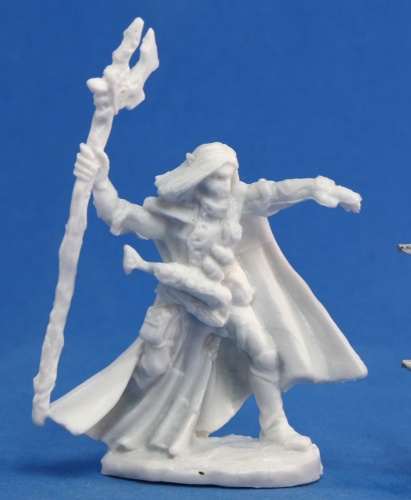 77092 Elquin, High Elf Adventurer